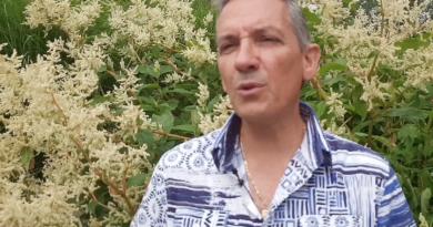 Alain Riat, musicien