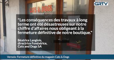 Fermeture définitive pour Cats & Dogs